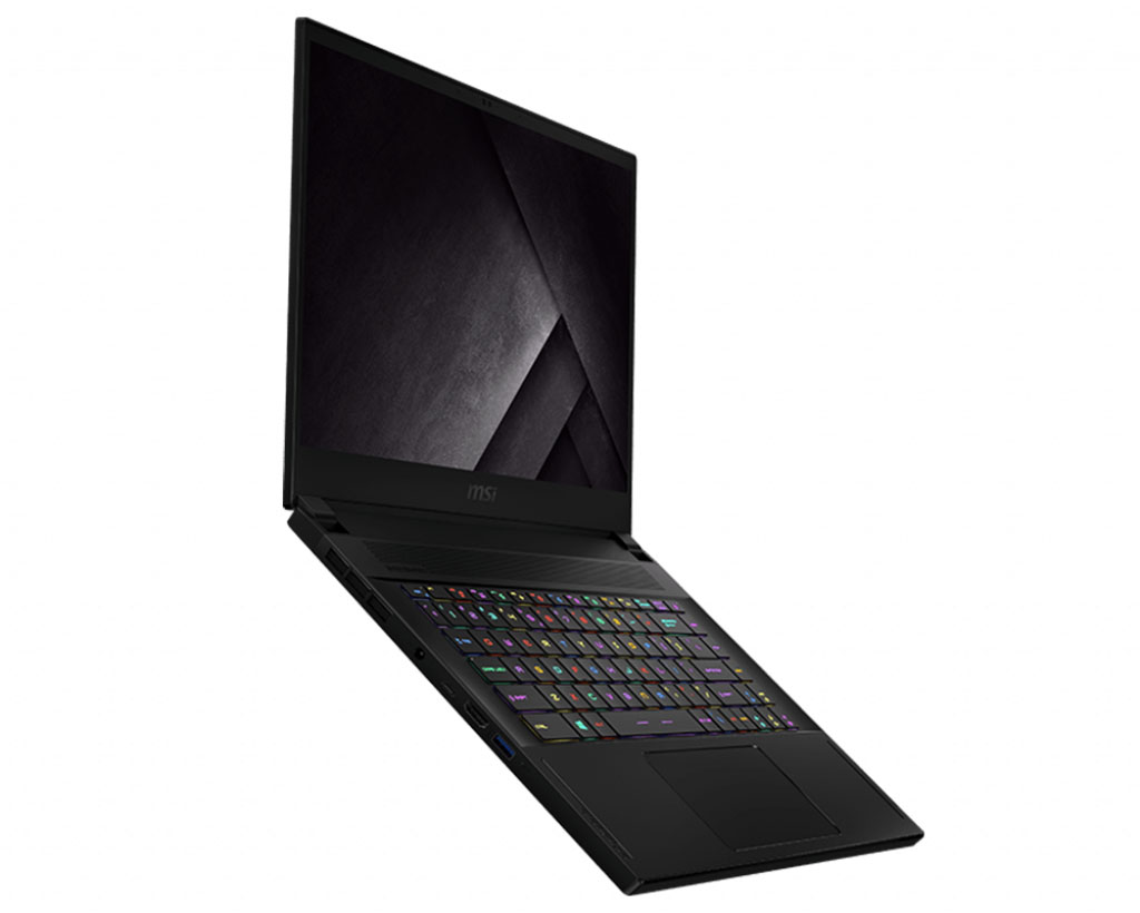 Laptop MSI GS66 Stealth 10SE - 213VN